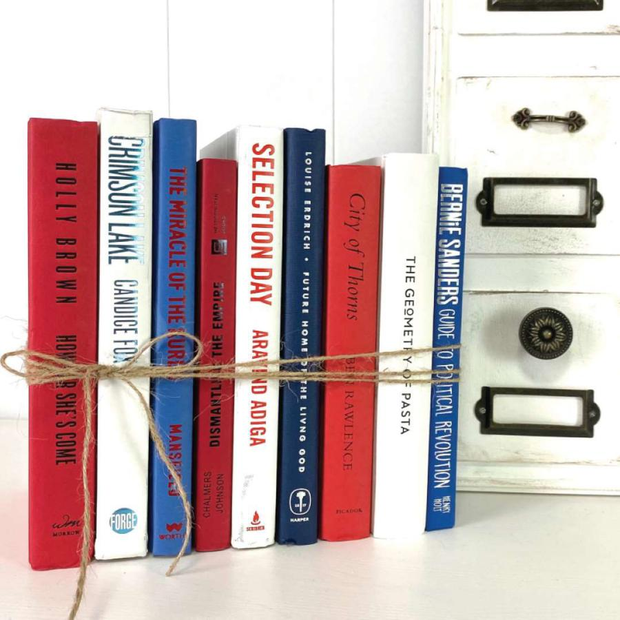 DIY red white and blue book craft