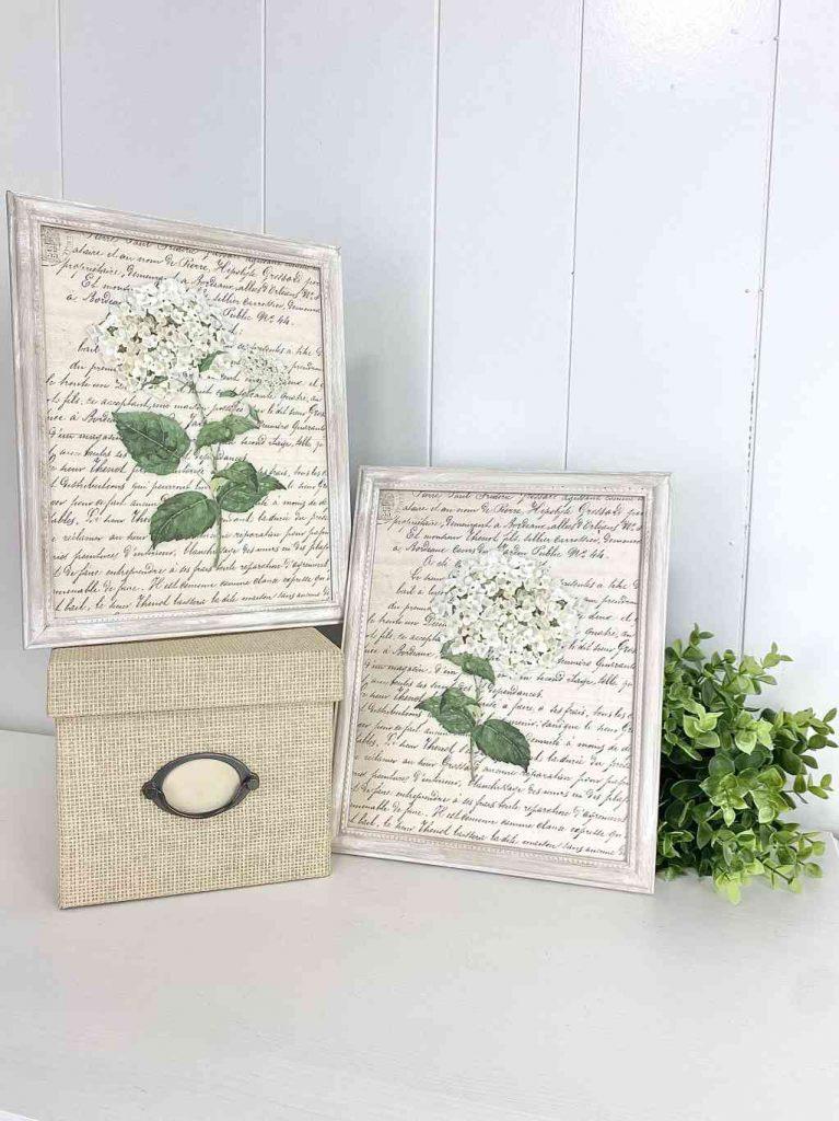 DIY framed botanical print craft